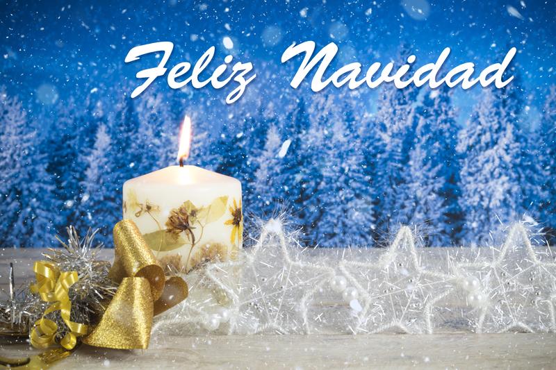 Felices Fiestas - TPVnews - Navidad 2019