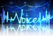 Autenticación por voz- Biometric Vox - TPVnews - Pago sin contacto - Tai Editorial - Madrid - España